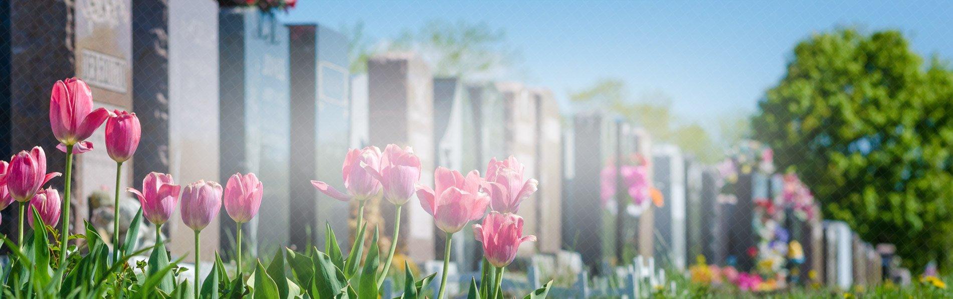 cimetiere fleurs