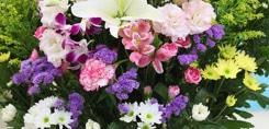 Le langage des fleurs & leurs symboliques
